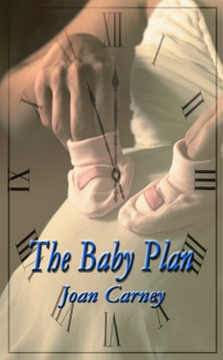 BookCover_THE BABY PLAN.jpg